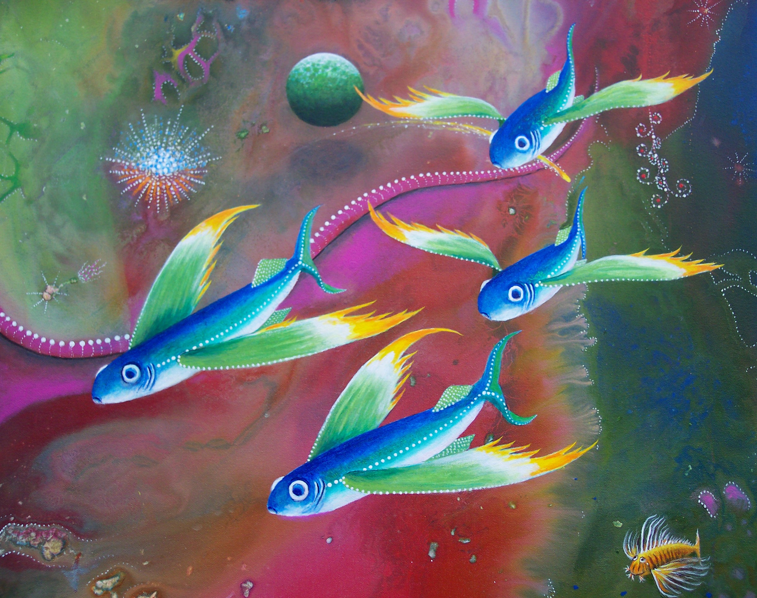 10 the heart of the reef for Flying fish images
